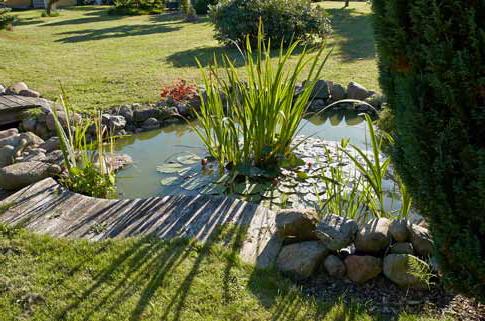 Bien entretenir son bassin - Les Jardins de Villebois